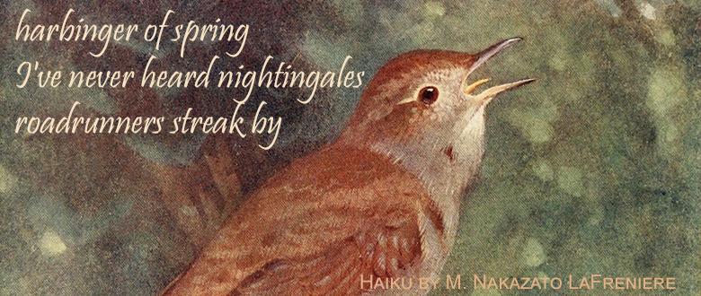 Haiku: Nightingale