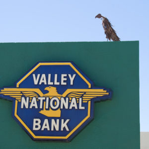 Vulture sculpture atop the Valley National Bank neon sign, Casa Grande Neon Sign Park, photo by M. LaFreniere, all rights reserved, Cactus Haiku