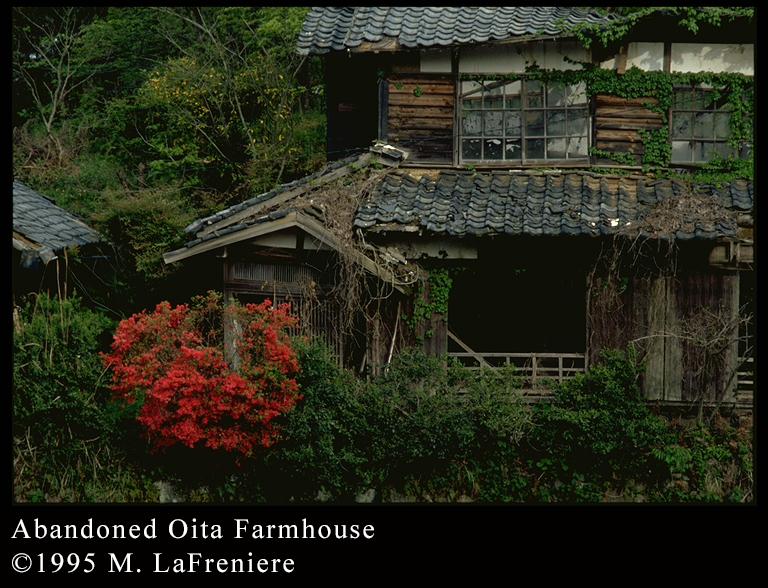 Haibun : abandoned farmhouse, Oita-ken, Japan - Cactus Haiku
